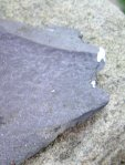 piece of roofing slate