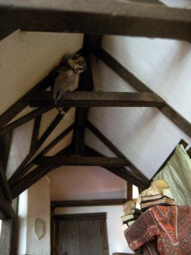 theinfill Medieval, Tudor, Jacobean 1:12 dolls house blog - the infill dolls house blog – owl in the beams